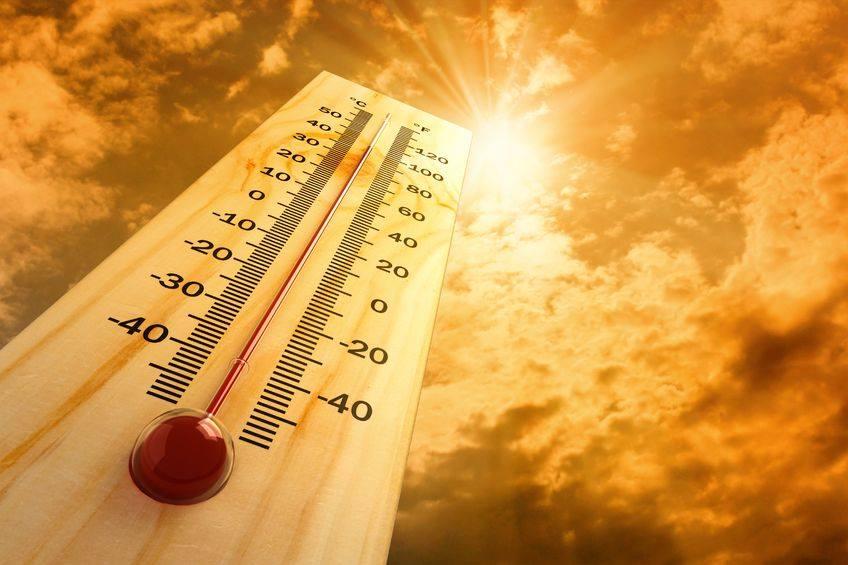 A Hot, Hot Summer…